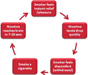 How does nicotine affect your brain